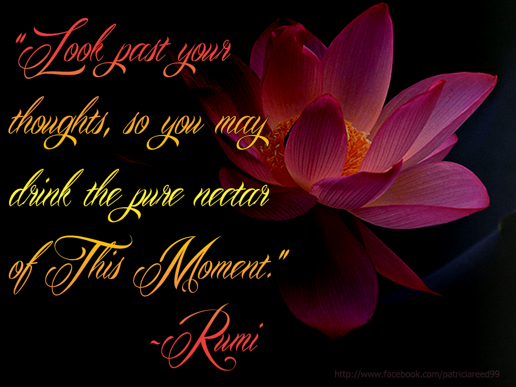 """Look past your thoughts, so you may drink in the pure nectar of This Moment.""  ~Rumi"